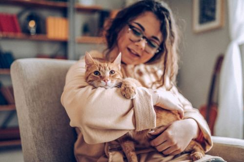 The crazy cat lady stereotype isn't reality, says new research