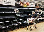 Emergency plan to tackle 'pingdemic' impact on food supply is a 'disaster', warn industry chiefs