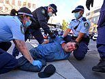 Sydney Covid lockdown protests: 21 men in court on Sunday for breaching public health orders