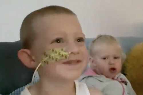 Scots tot battling cancer mistaken for tonsillitis delighted with video message from police dogs