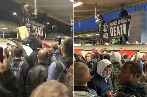 Angry commuters drag Extinction Rebellion protesters off roof of tube train