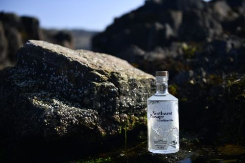 11 of the best new gins to try this month for International Scottish Gin Day