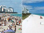 PICTURED: Miami's beaches are abandoned just two weeks after they were packed with Spring Breakers