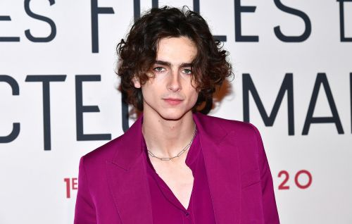 Timothée Chalamet reportedly eyed to play Willy Wonka in new prequel