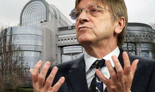 MEPs break cover on Verhofstadt's federalist plot to 'undermine nation-state democracies'