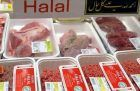 Why was a GCSE student disqualified for criticising halal meat?
