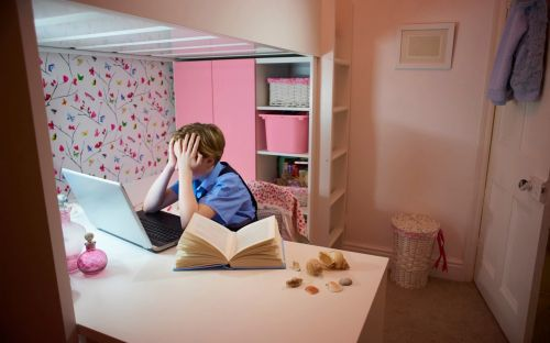 England ranked worst in world for cyberbullying of students, education report finds