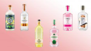 Lidl's gin festival is here and there are 10 new flavours to try