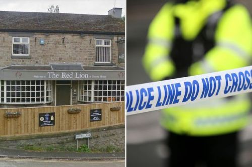 'Downright dangerous' beer garden invaders force pub landlords to call 999