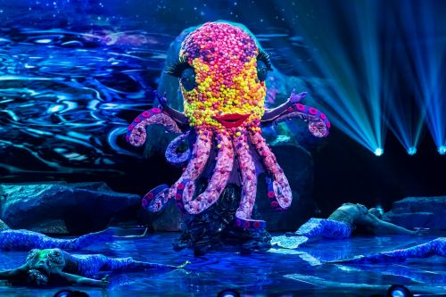 The Masked Singer's Octopus teased as I'm A Celebrity star and viewers are baffled