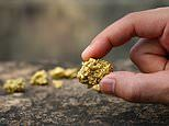 Hot commodities can help diversify your portfolio