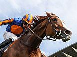 Love digs deep to hold off Audarya and win thePrince of Wales's Stakes at Royal Ascot