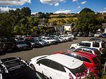 Staycation car hire meltdown: Holidaying Britons in frantic scramble to secure a vehicle