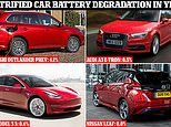 We reveal how quickly batteries in electric and hybrid cars degrade