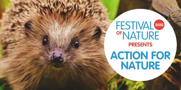 TAKE ACTION FOR NATURE AND VOLUNTEERING AT FON20
