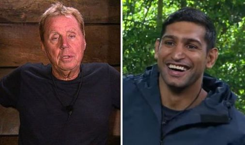 Harry Redknapp PRIVATE I'm A Celebrity texts revealed - Amir Khan tells all