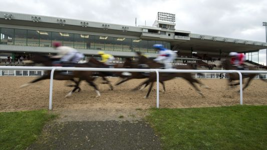 Daily Racing Tips: Timeform's three best bets at Wolverhampton on Thursday