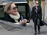 Sharon Stone, 61, looks ecstatic as she leans out of a car window to snap Parisian landmarks