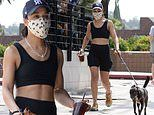 Tessa Thompson flashes her abs while walking her dog in LA. after THAT steamy kiss with Rita Ora
