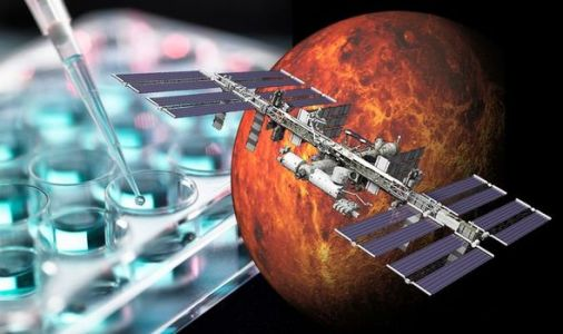 NASA Mars mission: Pioneering astronaut study proves long-term space travel IS safe