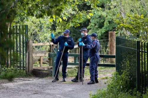 Man, 48, arrested for murder after woman's remains found in country park