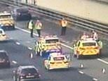 M6 is partially closed as two motorists FIGHT each other