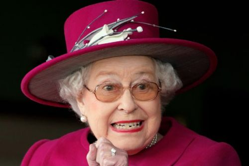 Queen celebrates her most successful year in horse racing with £460k prize money