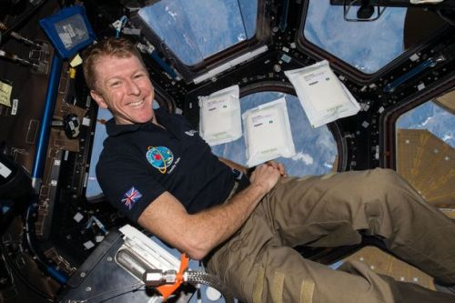 What it's like to go into space - zero gravity, the 'blackest black' & odd smell