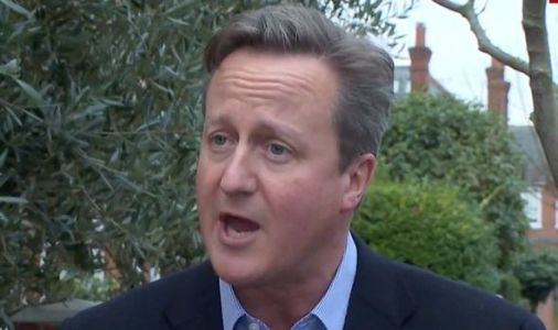 Meddling David Cameron hits out at 'very sad' foreign aid cut: 'Sunak made a mistake!'
