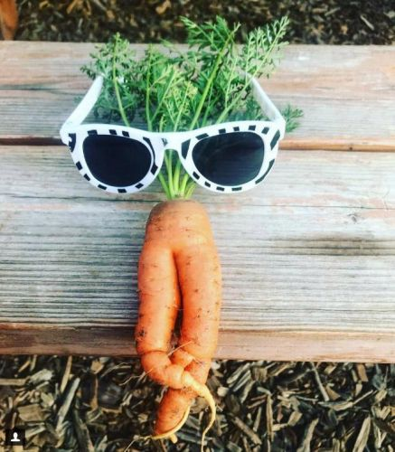 These pics of 'sexy carrots' will definitely make you look twice
