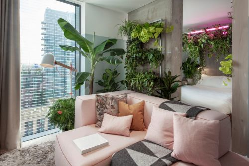 London hotel now has suites filled with houseplants to help you connect with nature