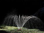 Wealthy Sydney boomers spend thousands to water gardens and wash cars in water restrictions