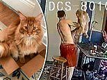 Security video shows pet groomer violently throwing a cat to the groundfrom May
