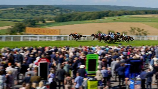 Goodwood and Galway Cheat Sheet: Saturday's tips and insight in one place