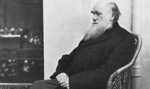 Charles Darwin's theory of evolution 'misunderstood' for 200 years: 'Not what he meant'