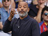 Harry Redknapp urges Nuno Espirito Santo to sort out Tottenham's set piece woes for Arsenal derby
