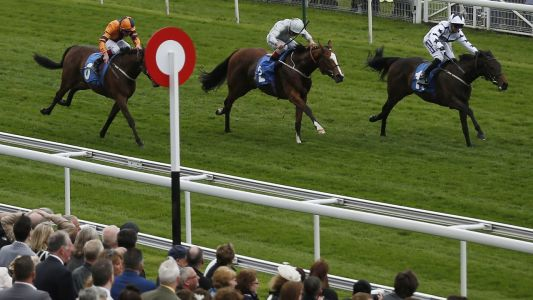 York Racing Tips: Timeform's three best bets for Saturday