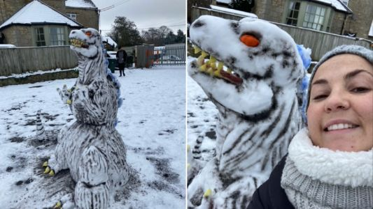 Couple carves huge Godzilla from snow using a butter knife