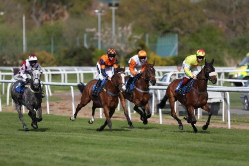 Templegate's racing tips: Redcar, Newton Abbot and Stratford - Templegate's betting preview for racing on Sunday, July 21
