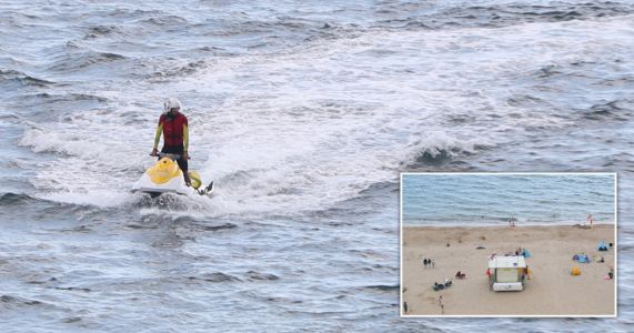 Swimmers evacuated from British beach after 'large shark' spotted close to shore