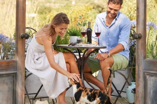 Wilko have just slashed prices on garden furniture - here are our top 5 best deals