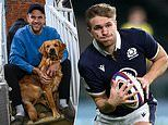 From Rugby's humble backwaters to the Lions - Chris Harris is loving every minute of it