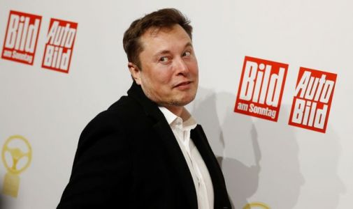 Tesla's Elon Musk says Brexit uncertainty made UK 'too risky' for new factory
