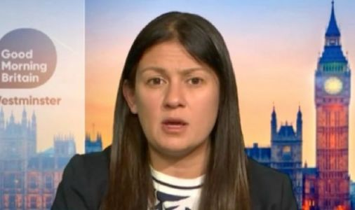 'You've ignored Brexit!' Lisa Nandy shamed for Labour Party pandering to Remainers