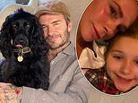Victoria Beckham enjoys low-key weekend with husband David and daughter Harper