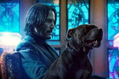 When is John Wick 4 out in cinemas? Who will star in it? What's it about?