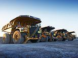 MARKET REPORT: China slams the brakes on the commodities boom