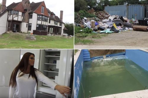 Katie Price says mansion really is 'mucky' as she shows off clutter, filth & rotting food
