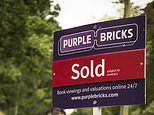 Purplebricks finds new home in Germany as online estate agent takes a stake in German peer Homeday