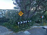 Teen motorcycle thieves rushed to hospital after jumping off a cliff to evade police in Sydney
